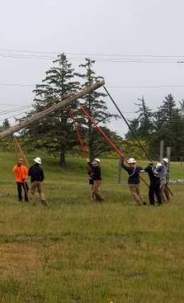 people near down powerline